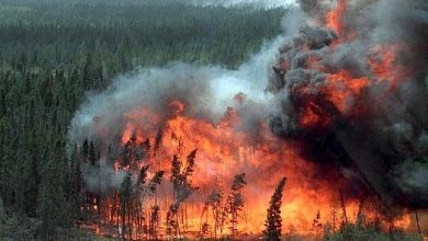 wildfire-spreads-closer-to-canadas-oil-sands