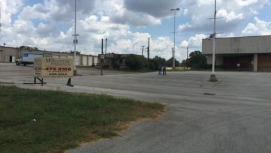 Photo of Fun Town Plants Roots for Fifth Dealership