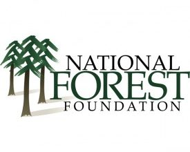 Photo of Thor, National Forest Foundation Team Up