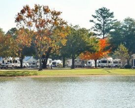 Photo of ARVC's OHCE to Feature New Green Initiatives